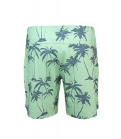 Preview: UV Boardshorts 'pag palms'